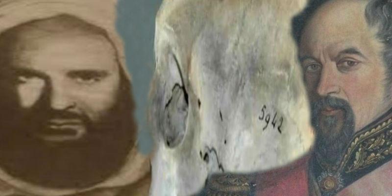 قاتل المصري صاحب الجمجمة 5942