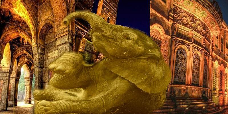 فيل القاهرة الفاطمية - تعبيرية