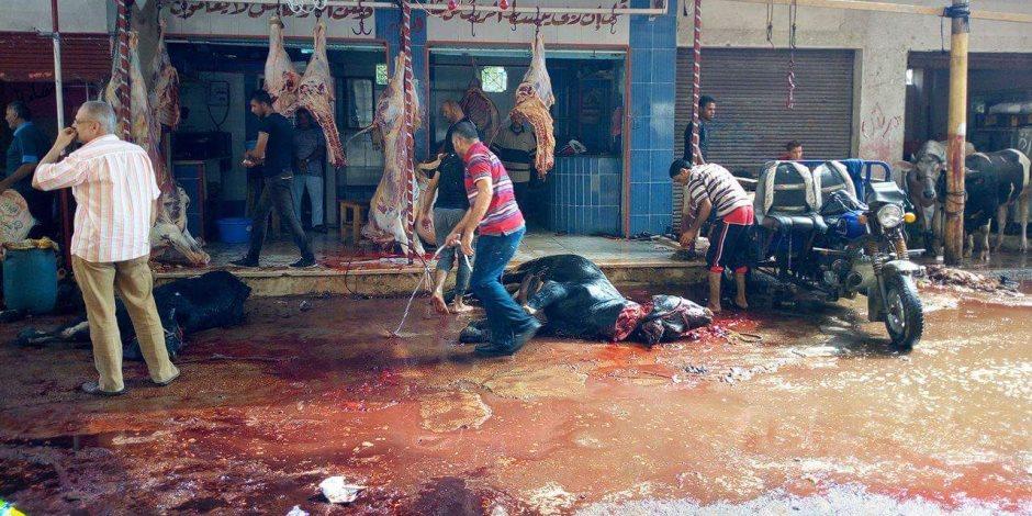 ذبح الأضحية في الشوارع