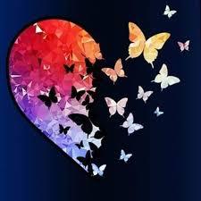 حسين الجسمي وفترة الفراشات الملونة
