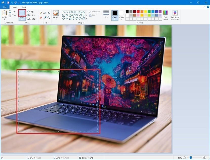 كيفية قص الصور في ويندوز 10 بالأدوات المدمجة في نظام التشغيل
