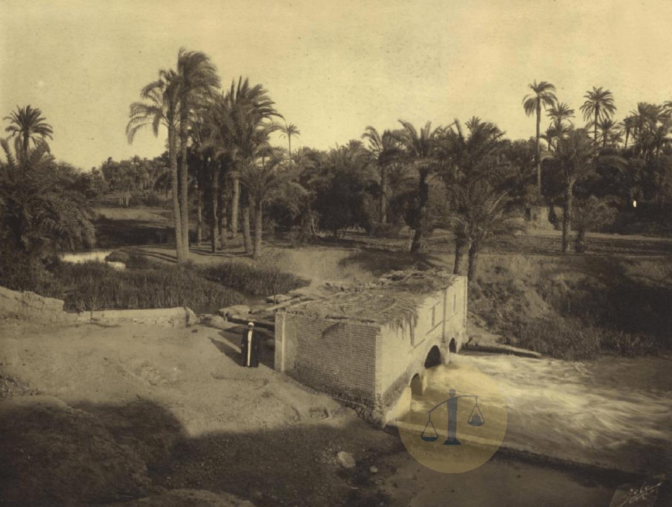 قرية من قرى محافظة الشرقية