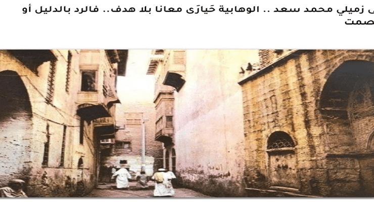 مقال مي محمد المرسي