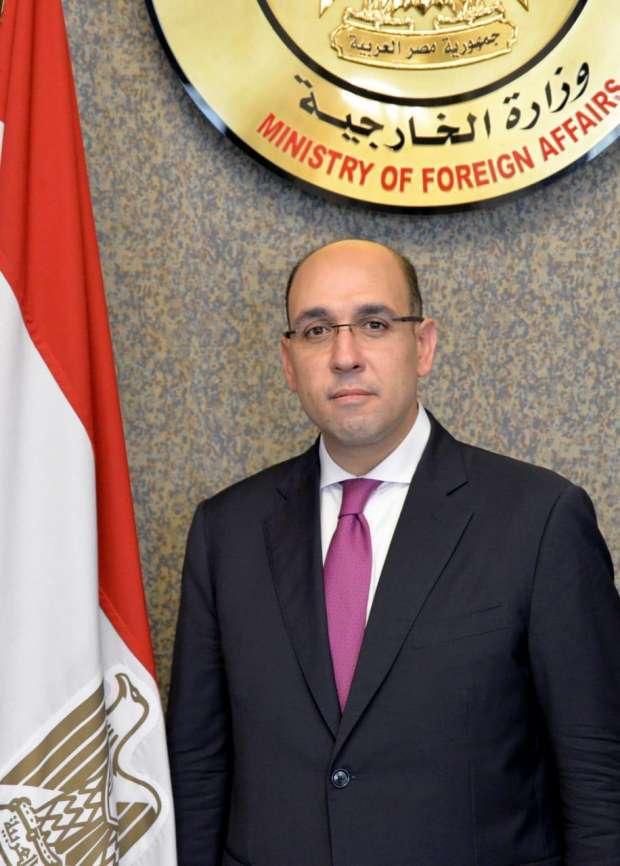 السفير أحمد حافظ