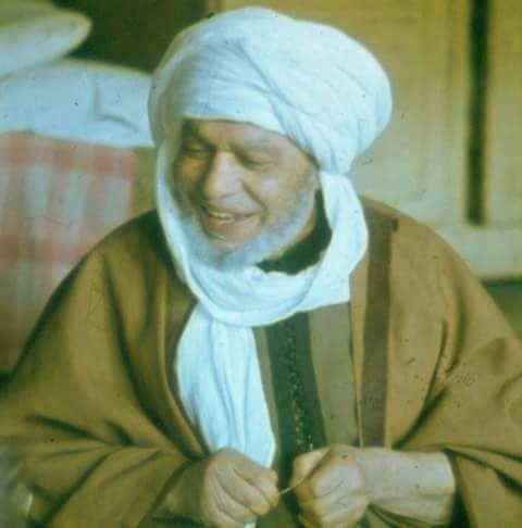 الشيخ محمد الحافظ التجاني المصري