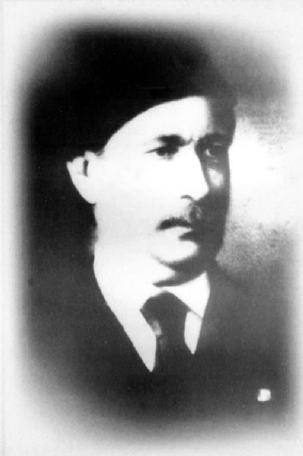 محمد زكي باشا